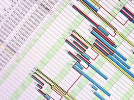 Auditing Programming