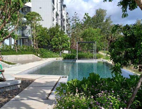 Cassia 3 Phuket